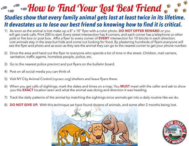 How_to_find_your_lost_best_friend_4.png