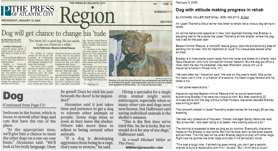 bradley_newspaper_horizontal_LG_2.png