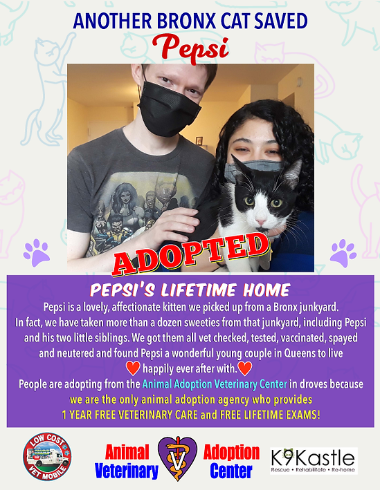 Pepsi_adopted_flyer_2021_1.png