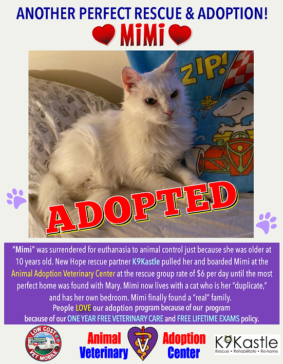 MIMI_adopted_poster.png