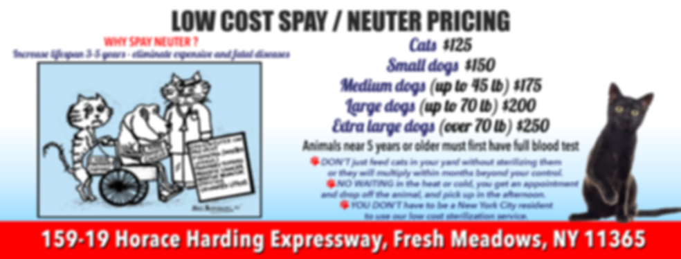 aavc_website_build_SPAY_NEUTER_PRICING_1