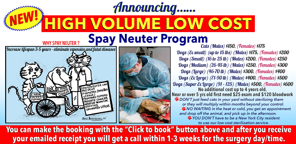 lcvm_high_volume_spay_neuter_2021_2.png