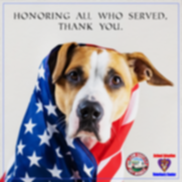 lcvm_memorial_day_dog_wrapped_flag.png
