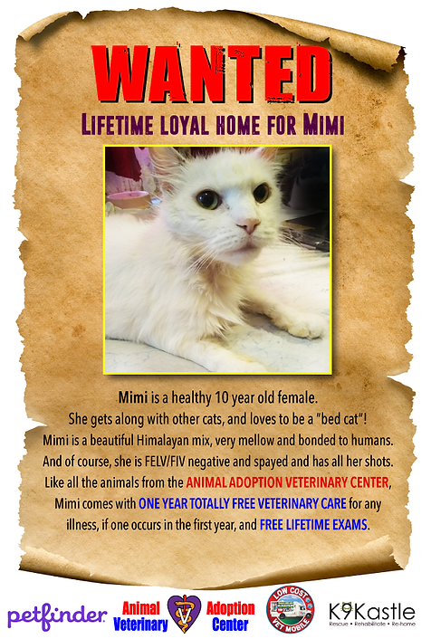 mimi_wanted_flyer_3.png