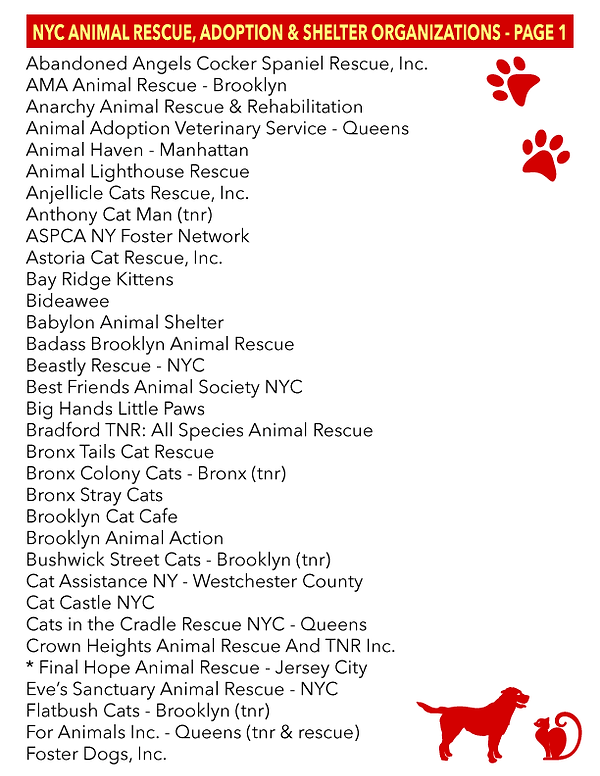NYC_Rescue_Organizations_1.png