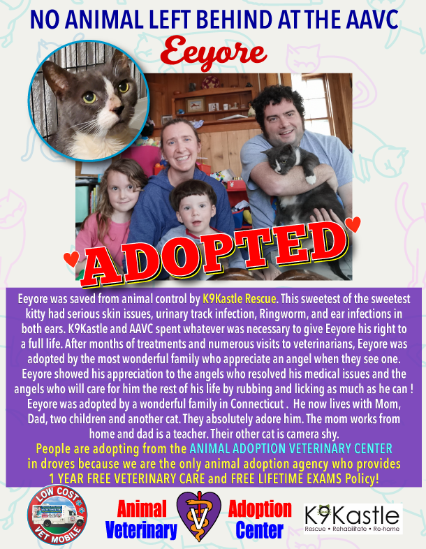 Eeyore_adopted_flyer_2021_1.png
