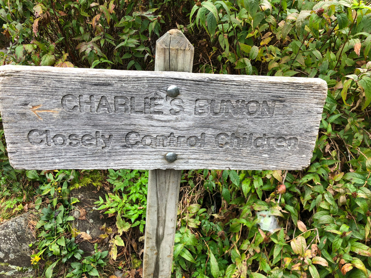 Charles Bunion Hike - 8 miles - Sign only for the last part
