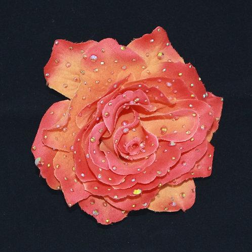 Sunfire Rose