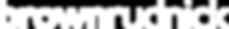 Brown_Rudnick_Wordmark_White_Medium_RGB5