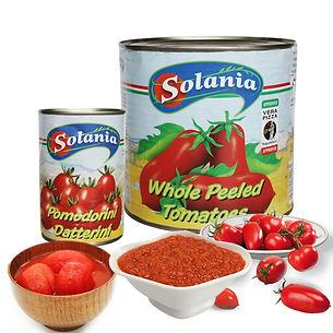 Main Tomato.jpg