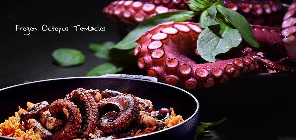 Frozen Octopus Tentacles.jpg