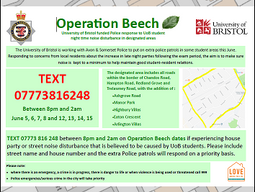 Police say Operation Beech doesn't aim to criminalise young people