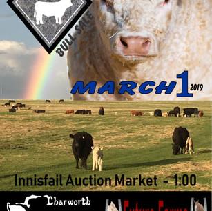 38th Select Charolais Bull Sale Promo