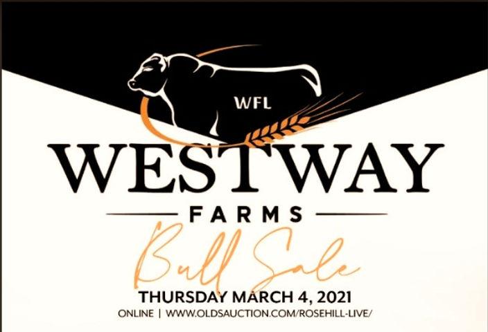 Westway%20Bull%20Sale%202021_edited.jpg