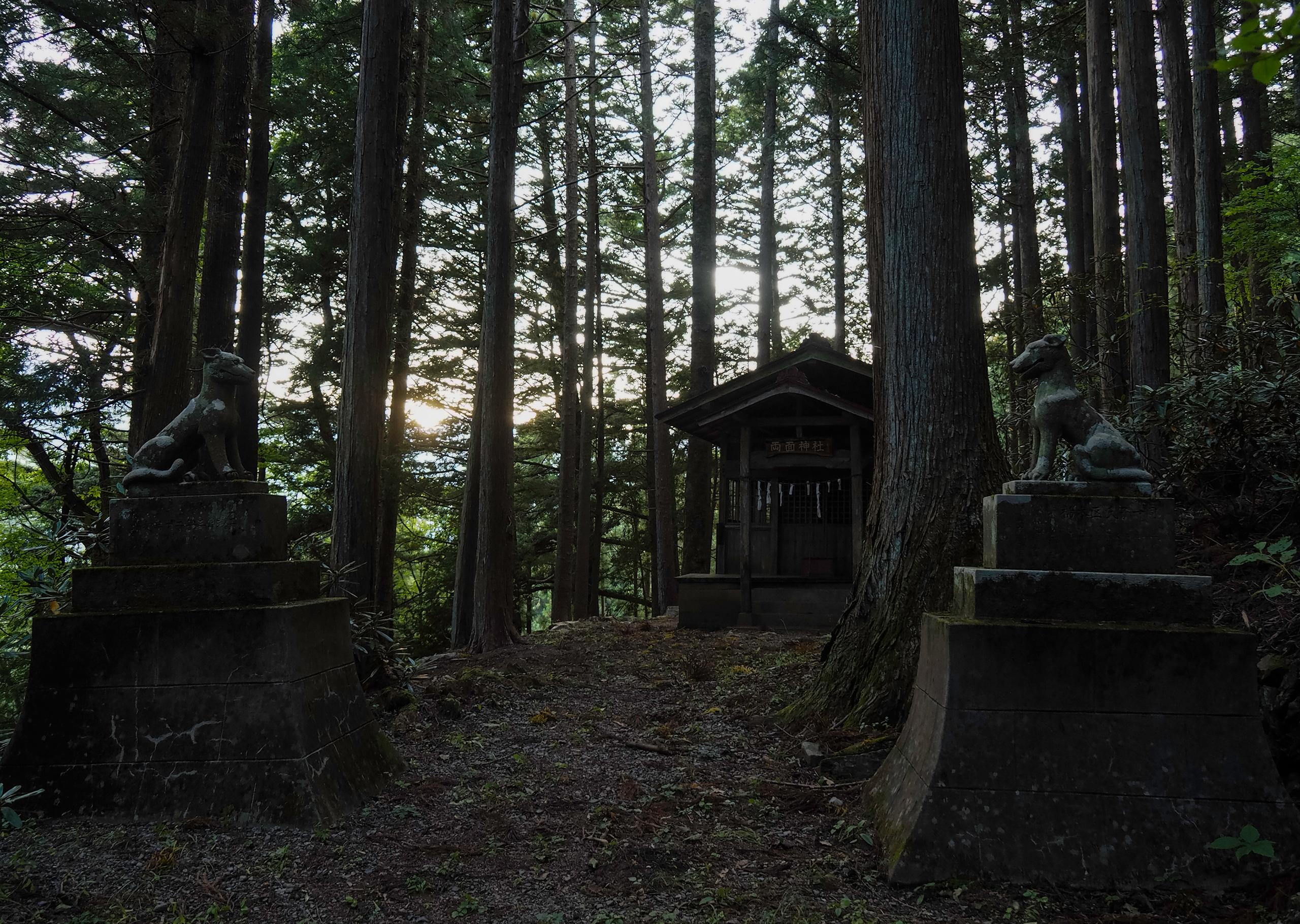 狛狼像が護る両面神社の境内