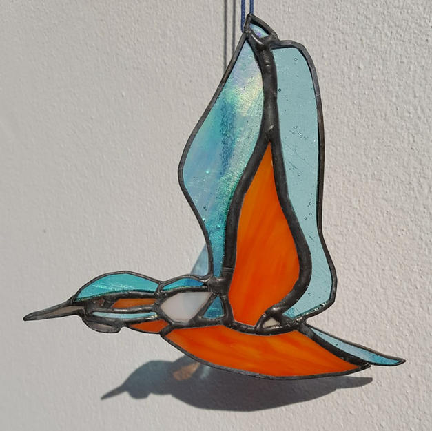 Kingfisher Hanging