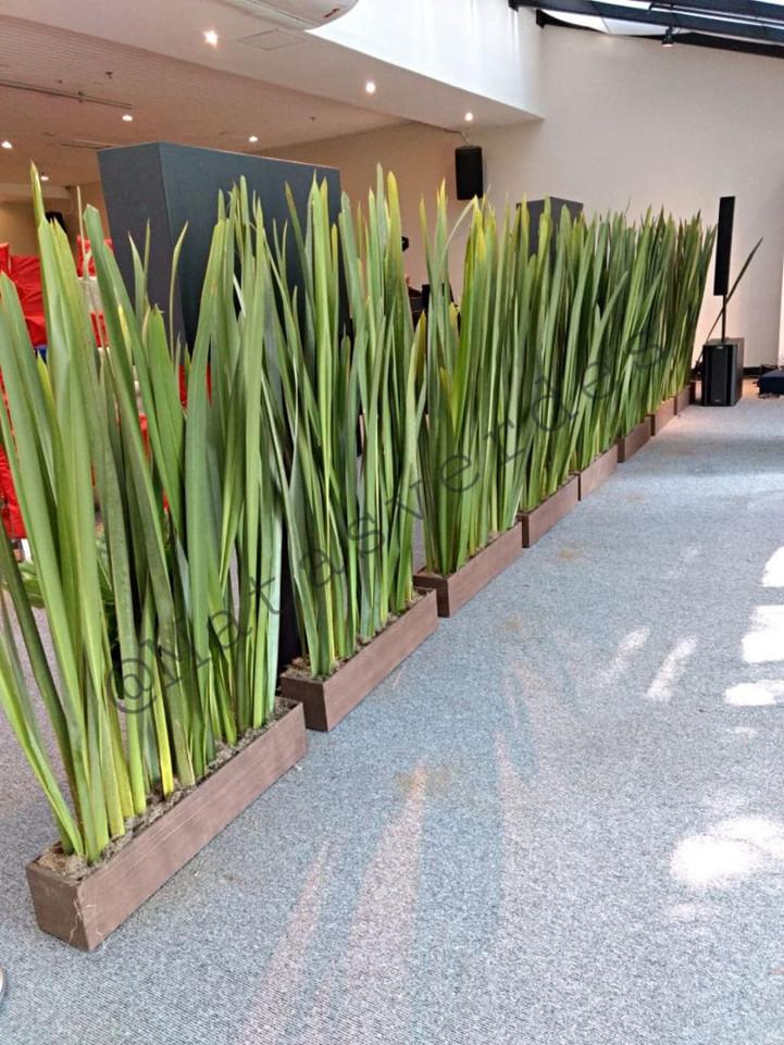 Jardineira_com_Fórmio.jpg