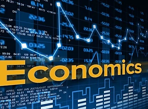 4202019111023_8dt2wjivvq_economics.webp