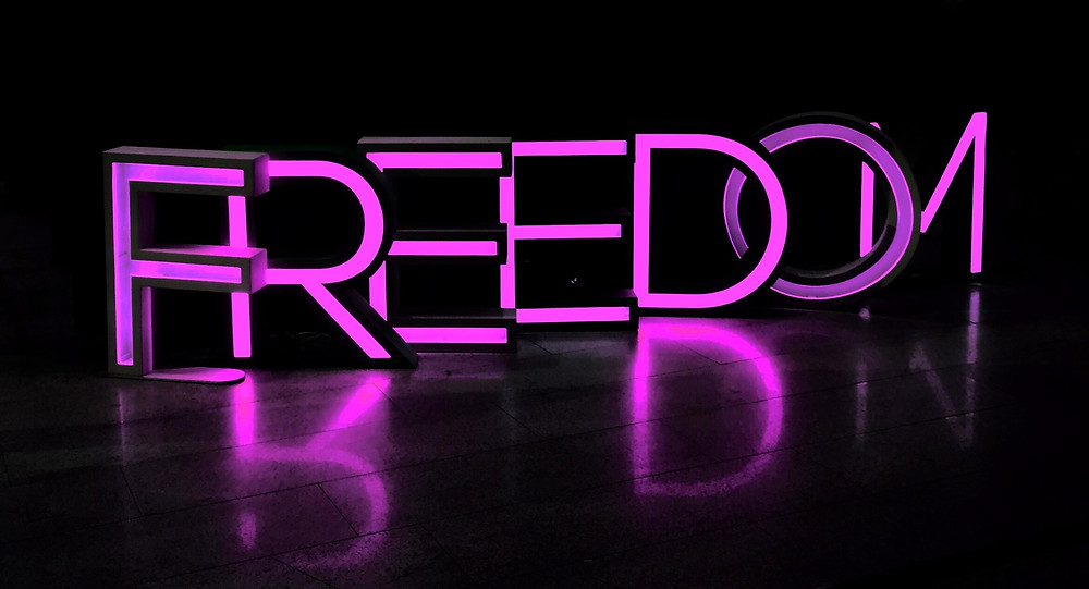 Freedom Neon Pink Sign Reflection Black Background