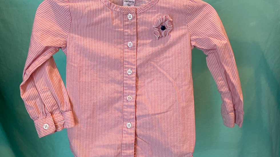 Size 2T Carter's Shirt
