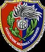 associazionenazionalecarabinieri.png