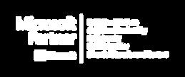 microsoft logo 5 competencies white:tran