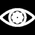 visión.png