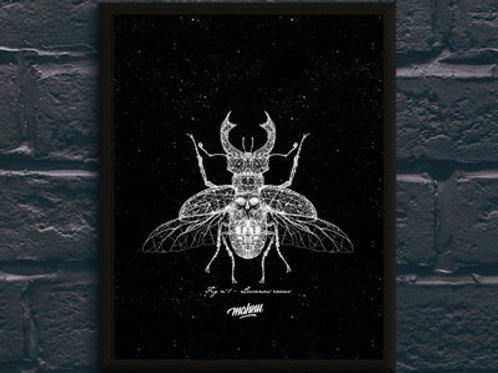 Planche Mahnu - Entomologia