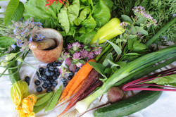 Colourful, healthy vegetables and herbs