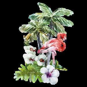 Tropical Fleurs et Flamingo