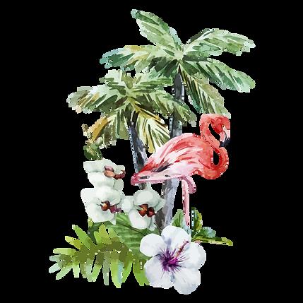 熱帯の花フラミンゴ