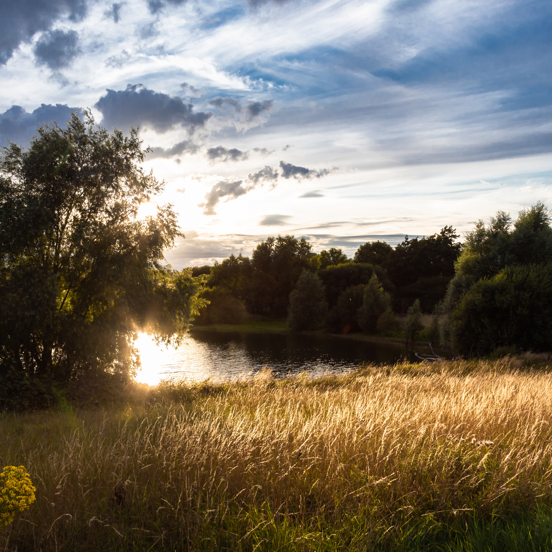 Pitsford Sunset