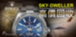 banner_skydweller.png
