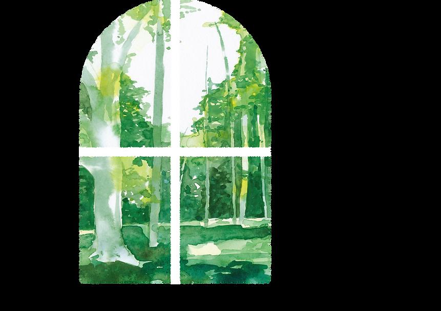 MORI-HAKU(森泊)公式Webサイト