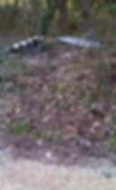 vvv-polluee2.jpg
