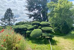 2021-06-06 Chateauneuf d Isere et Jardin