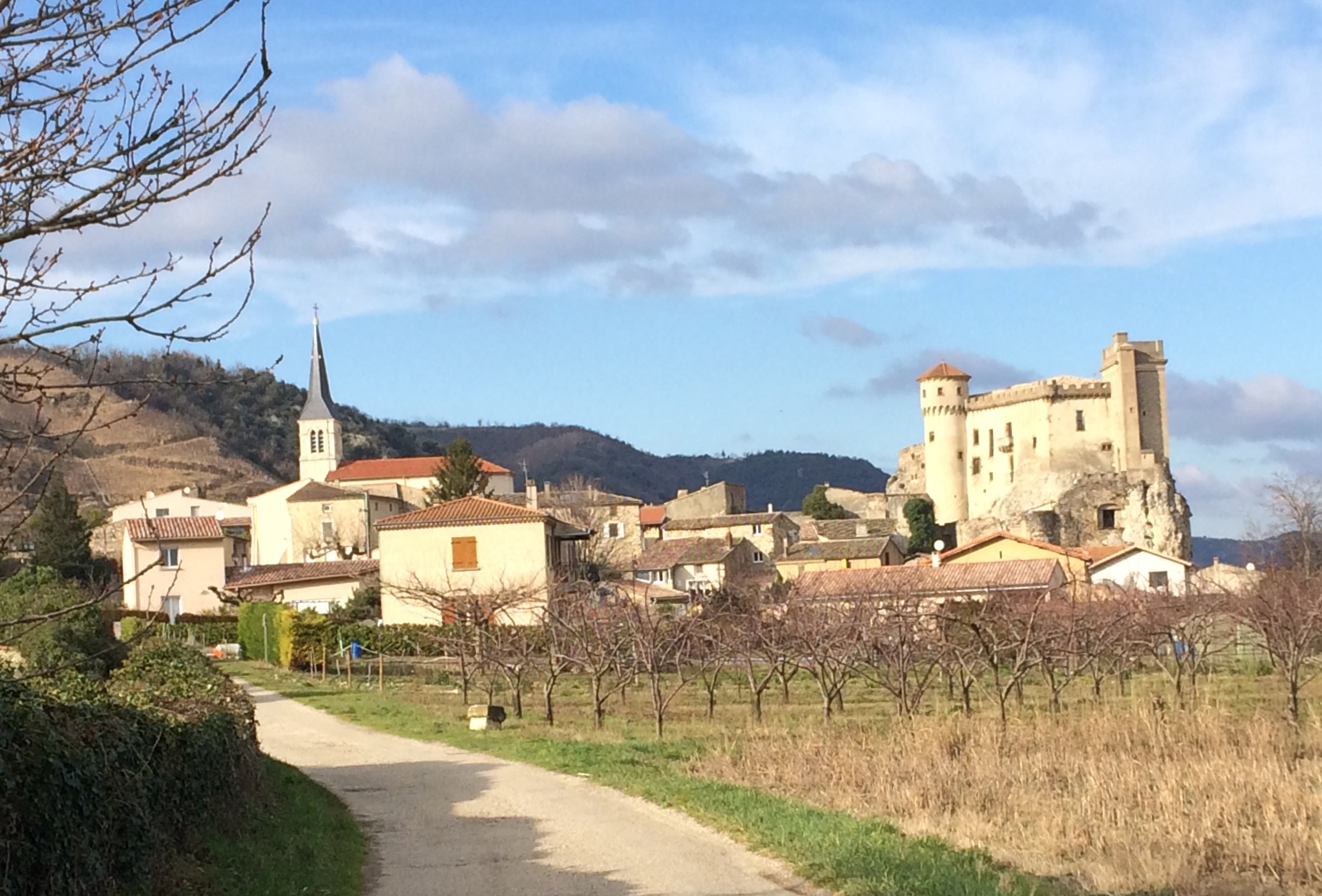 2020-01-19 Chateaubourg (1)
