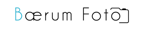 BF logo 2_edited.png