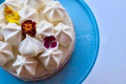 Vanilla Petit Cake