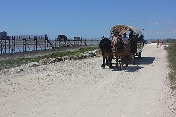 Balade à Port-des-Barques