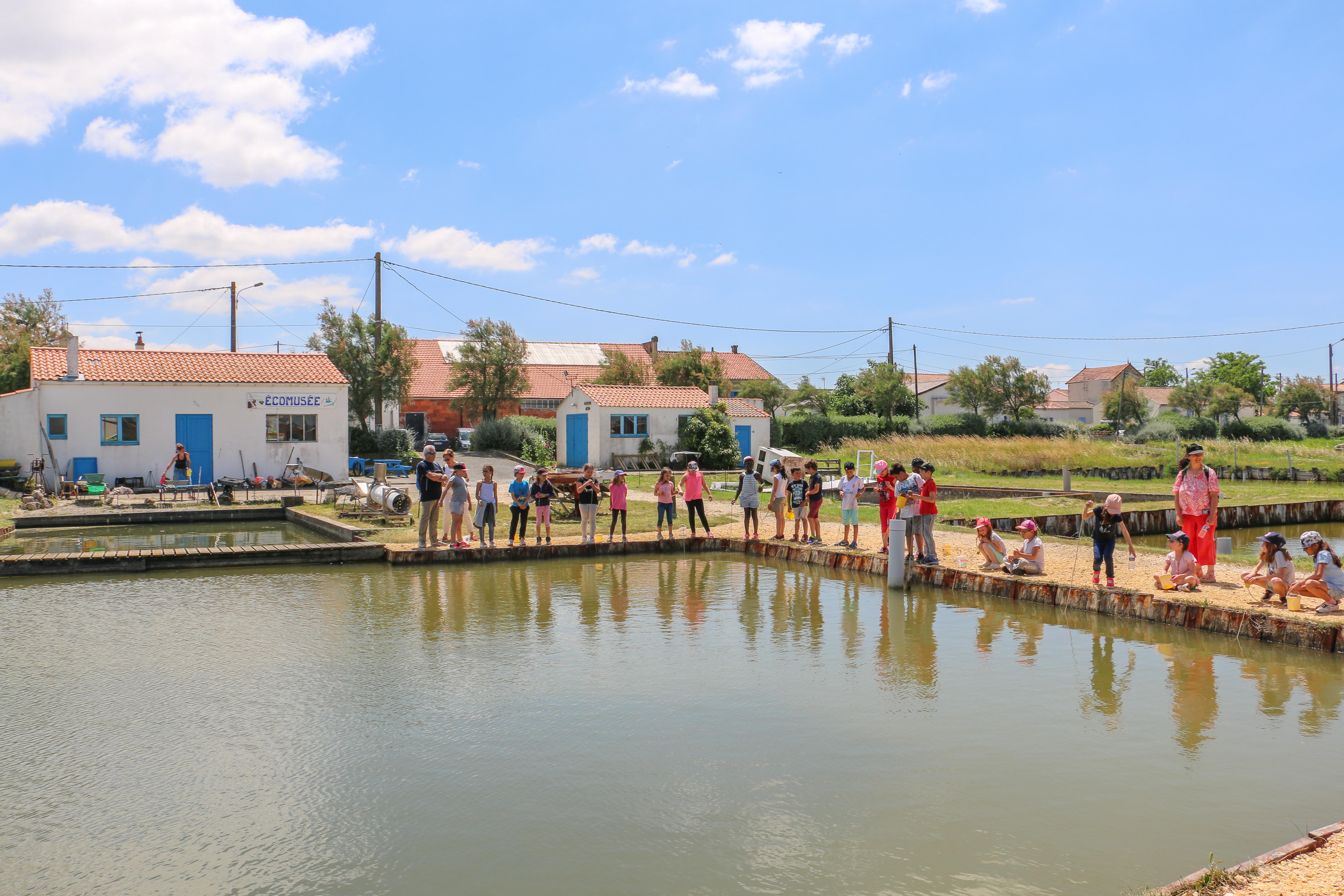 rochefort-ocean-port-des-barques-écomus2