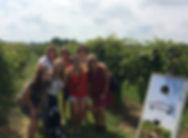 Galena Wine Tours Inc.