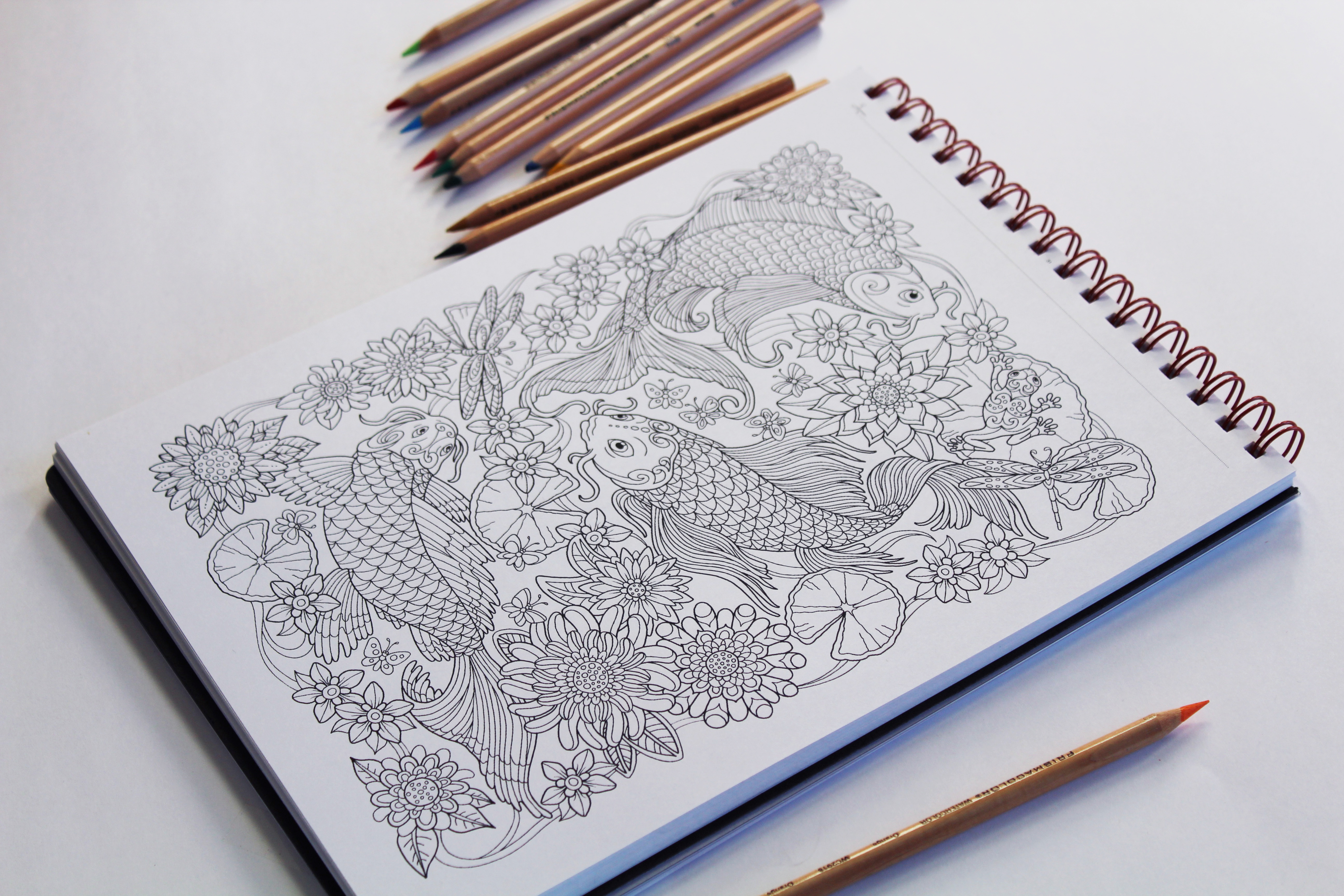 Fundraisers for Schools | Detailed Coloring Books | Action ...