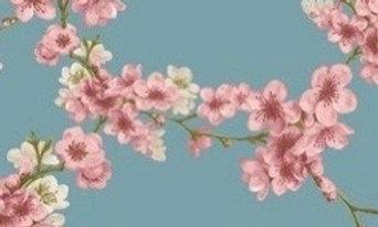 Soft sweat light blue blossom (pr 25 cm)