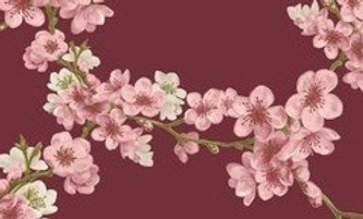 Soft sweat red blossom (pr 25 cm)