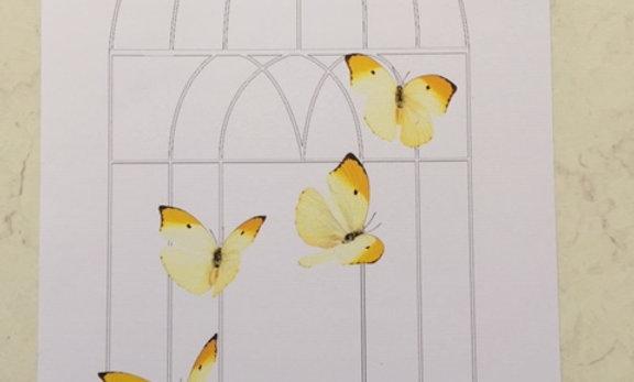 A5 kunst kort design af Anne Krøjer