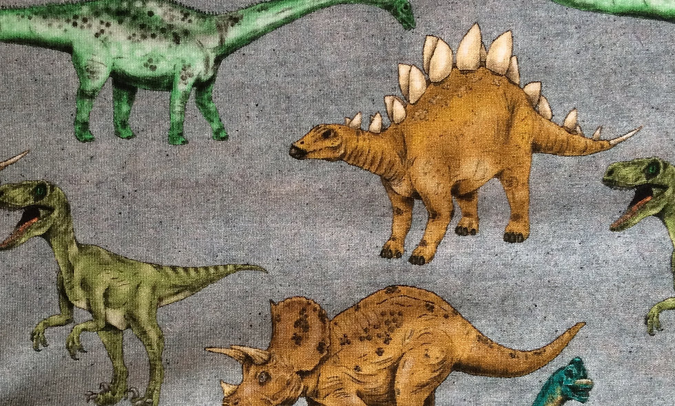 Dinosaur walk (pr 25 cm)