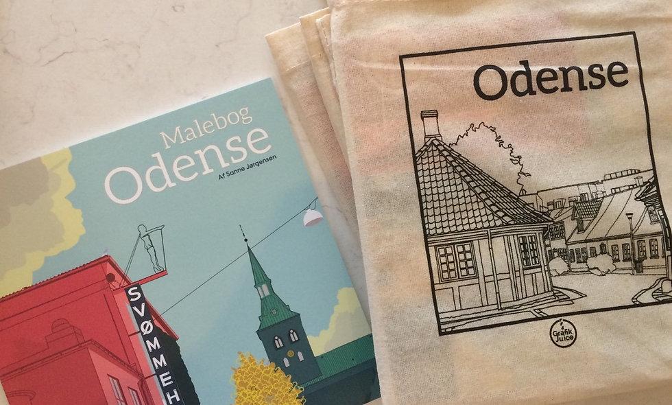 Odense malerbog
