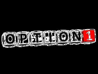 opcion%201_edited.png