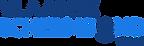 logo VSB.png